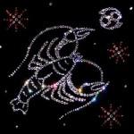 Картина Знаки Зодиака из камней Сваровски